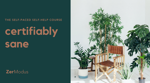 Certifiably Sane: A Self-Paced Self-Help Course for Managing Anxiety