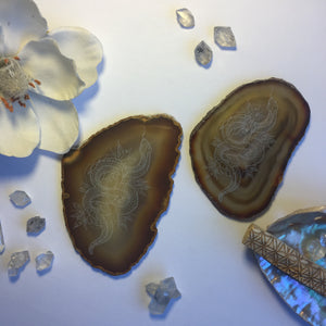 """Cosmic Serpent"" Floral Snake Agate Slices"