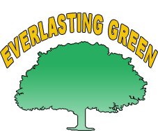 Everlasting Green