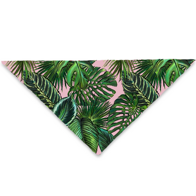 PALM LEAF BLUSH PET BANDANA
