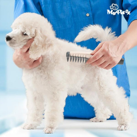 Comb & Cut Electric Comb and Knot Cutter for Dogs-My Pet Ez-Clauven.com