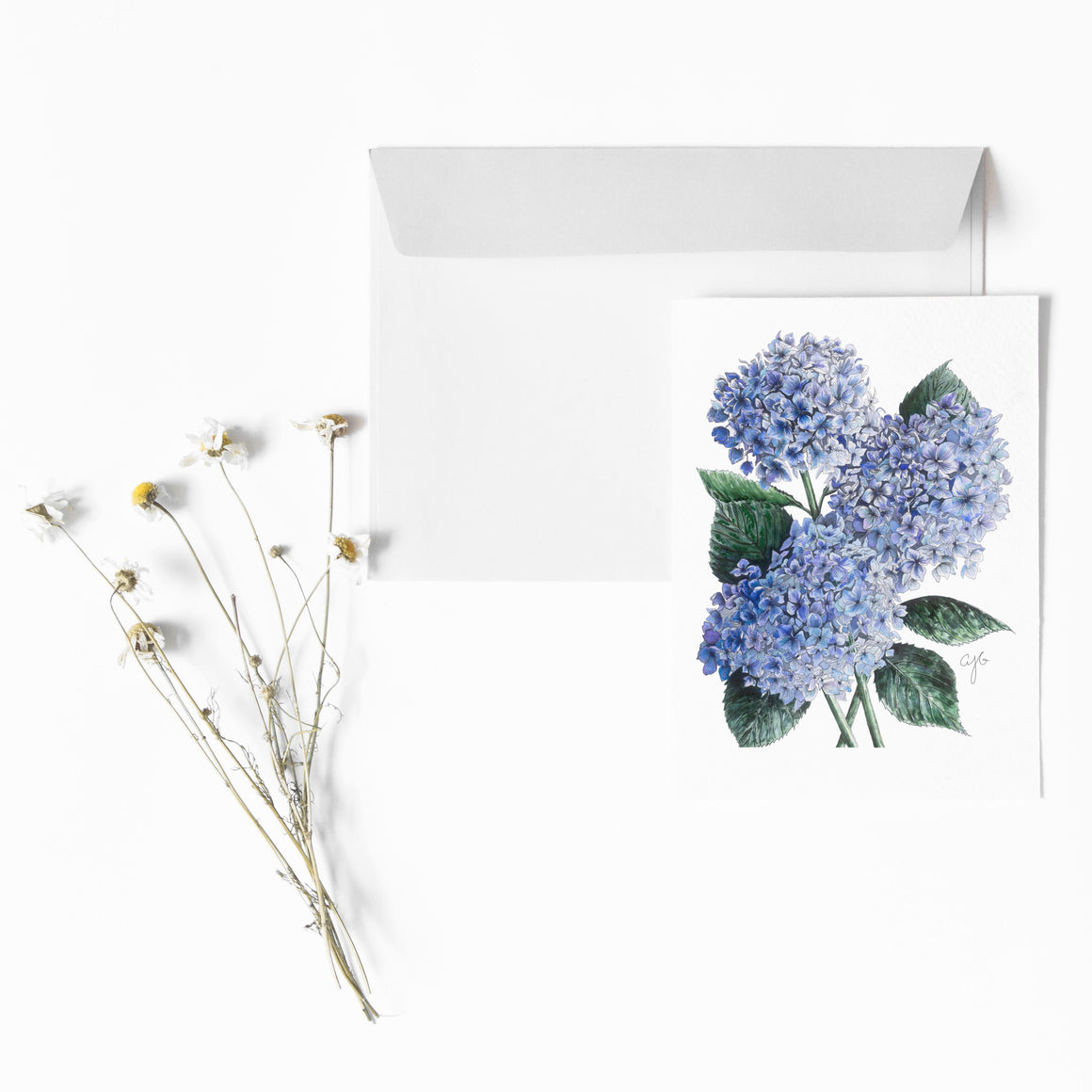 BLUE HYDRANGEA Botanical Note Card