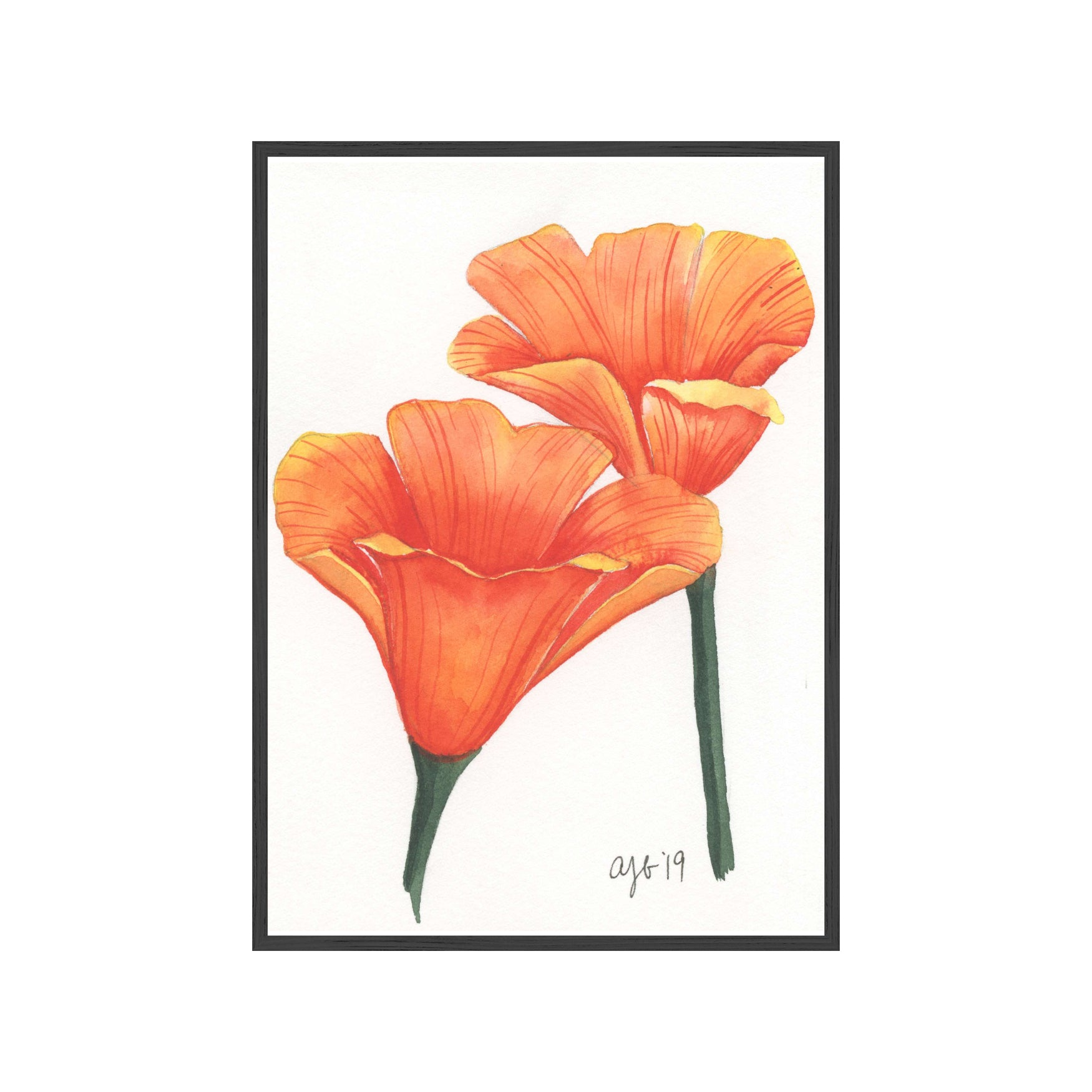 CALIFORNIA POPPIES Fine Art Watercolor Print (Small)