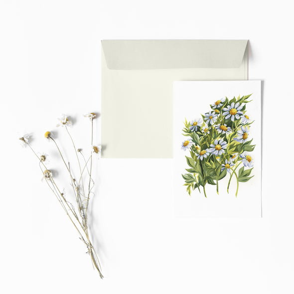 APRIL: DAISIES {Year in Flowers Note Cards}