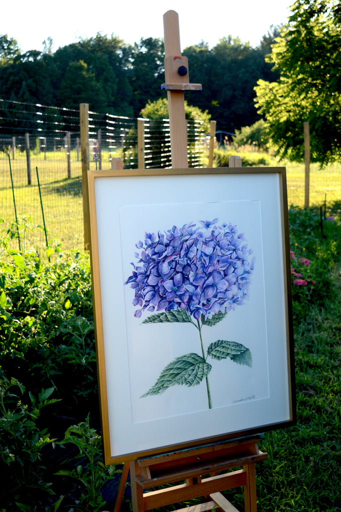 LARGE Purple Hydrangea {The Archives}