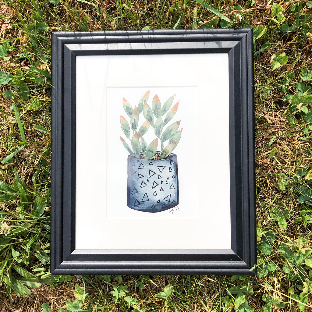 Succulent in Gray Pot