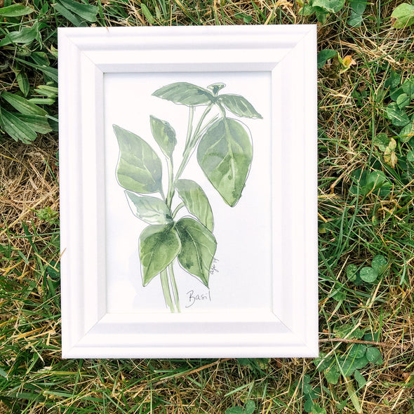 Kitchen Herbs: Basil Watercolor
