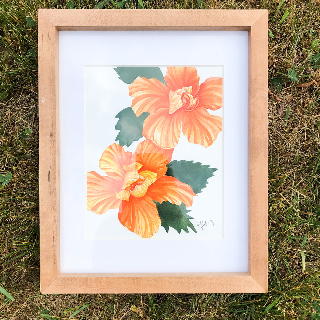 Two Orange Hibiscus