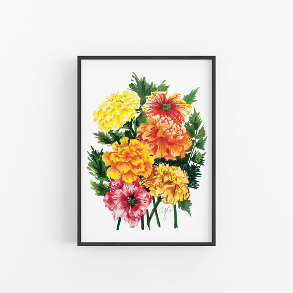 MARIGOLDS Fine Art Watercolor Print