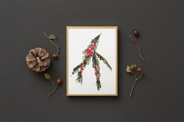 Pine Branch and Red Berries : A Thrill of Hope
