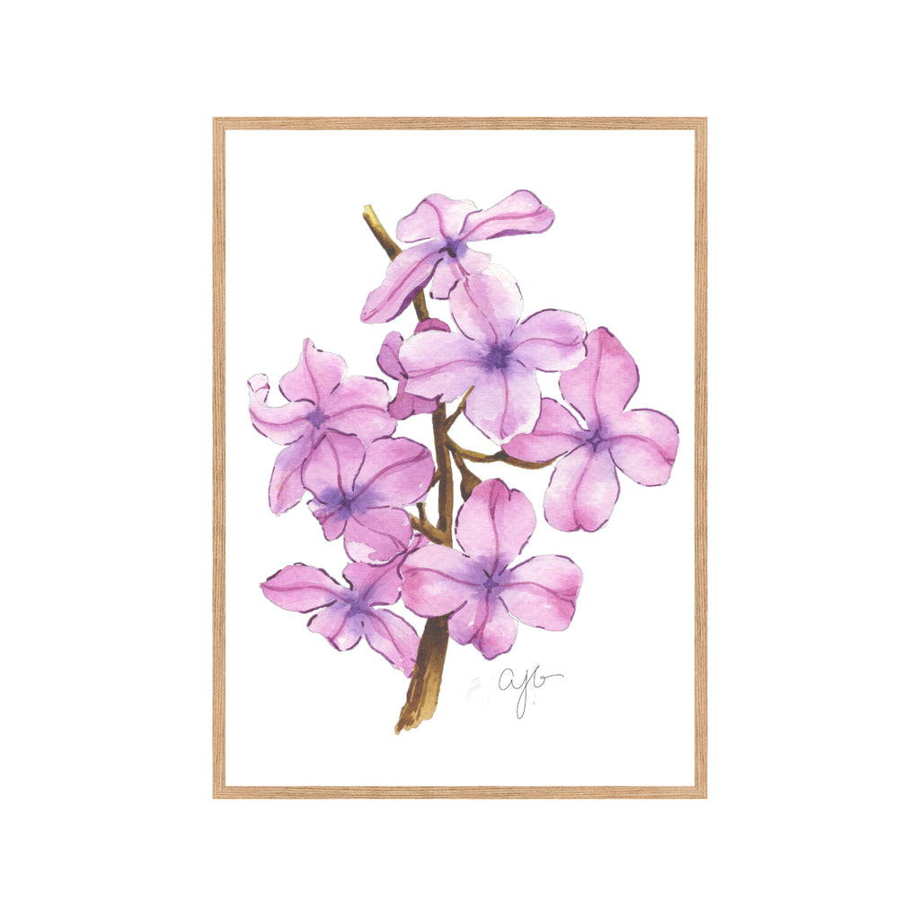 PINK BLOSSOMS Fine Art Watercolor Print