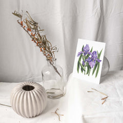 PURPLE IRISES Botanical Note Card