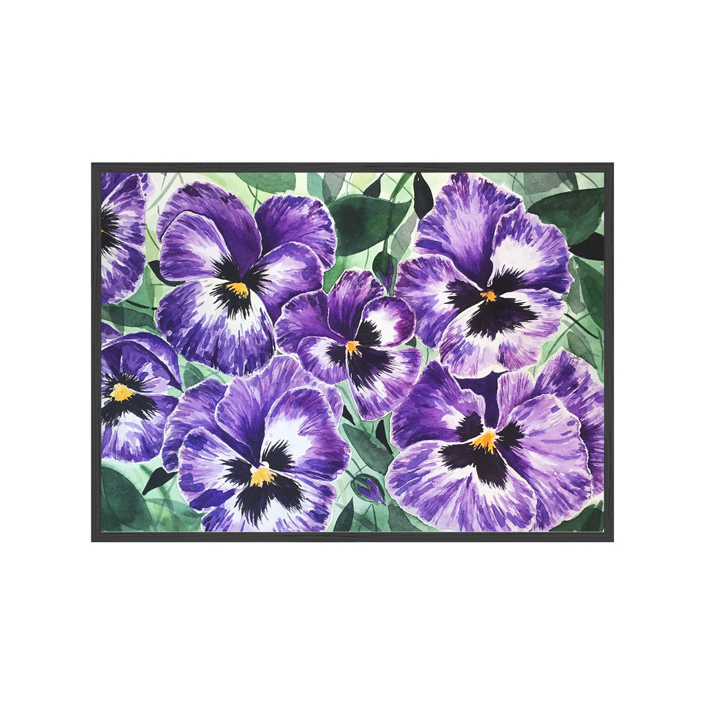 PURPLE PANSIES Fine Art Watercolor Print