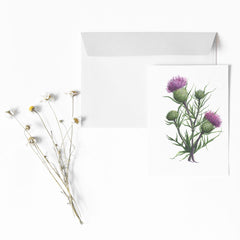 SCOTTISH THISTLE Botanical Note Card