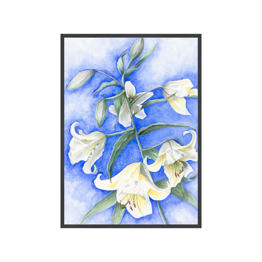 WHITE TRUMPET LILY Fine Art Watercolor Print