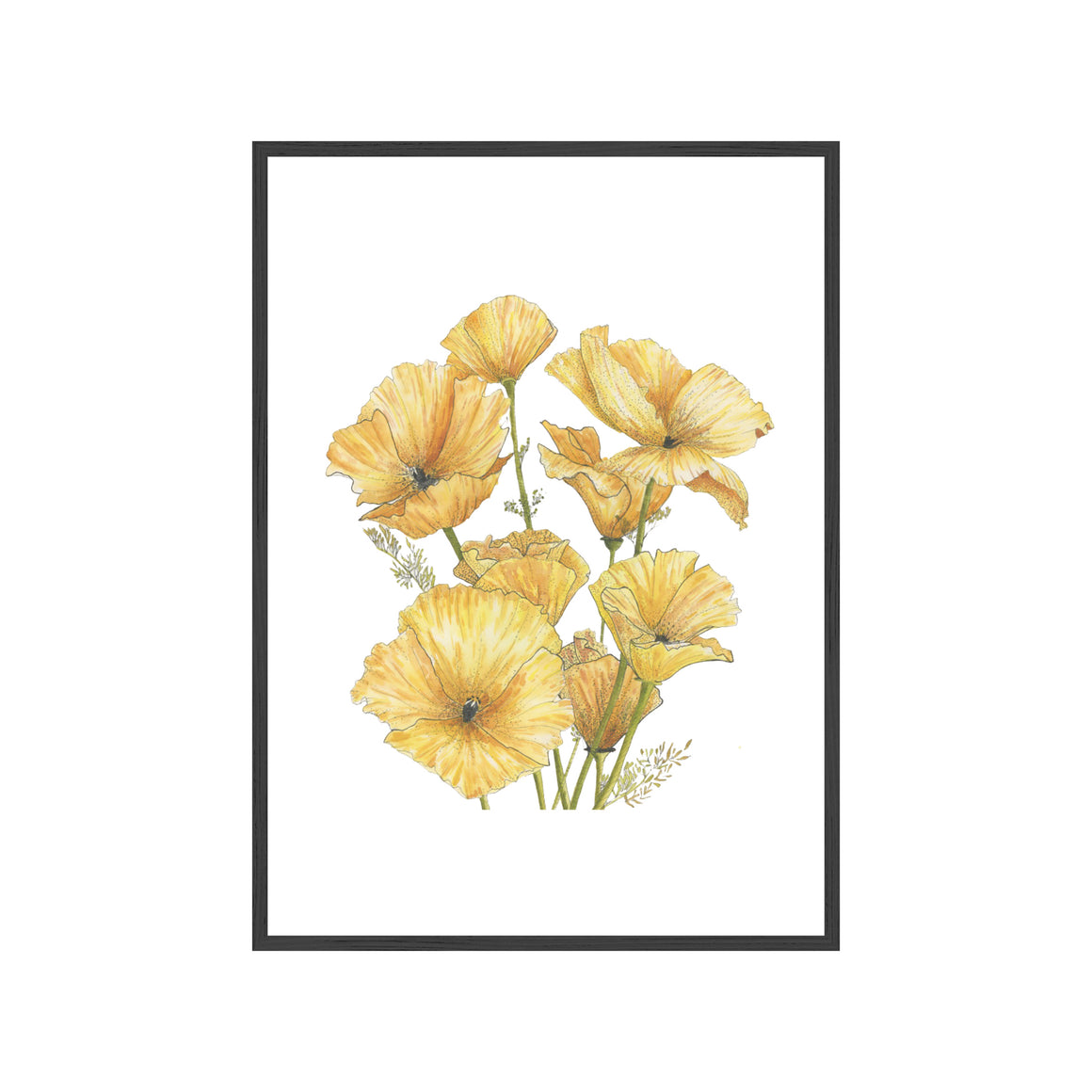 YELLOW POPPIES Fine Art Watercolor Print