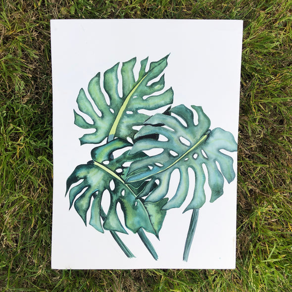 Trio of Monstera Leaves
