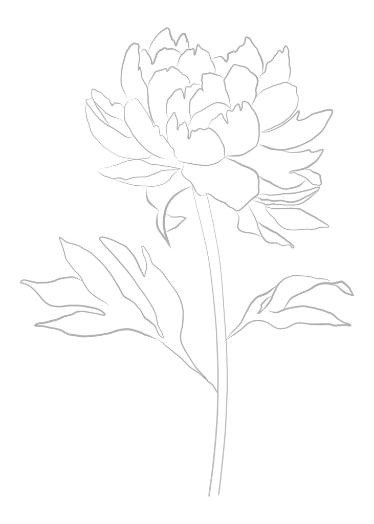 FLORAL WATERCOLOR TEMPLATES (Pre-drawn for painting!)
