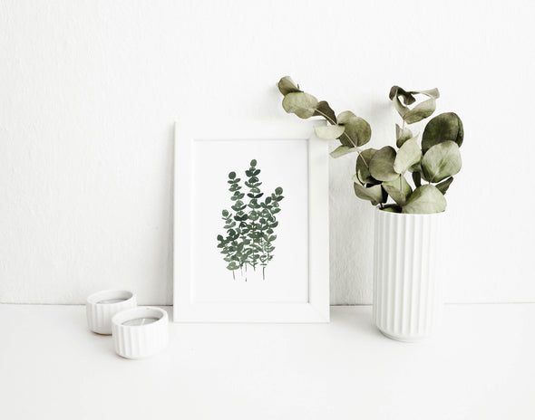Eucalyptus Bunch : A Thrill of Hope