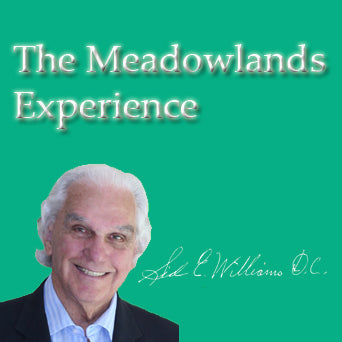 The Meadowlands Experience