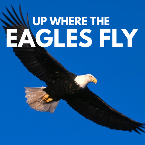 Up Where The Eagle Fly - Dr. Sid Williams