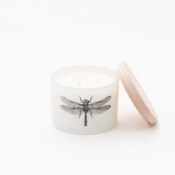 Citronella Candle - Sea Salt