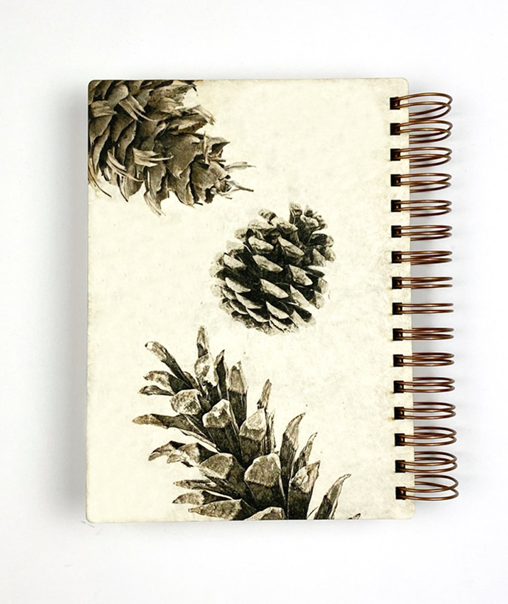Pine Cone Journal