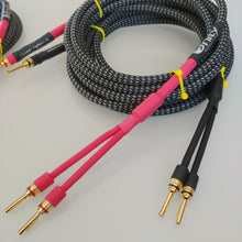 Cancer Fighter™ SL Biwire Speaker Cables