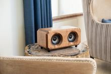Riverwood Acoustics The Hudson Premium Wood Bluetooth Bookshelf Speaker