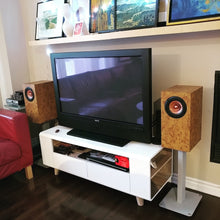 Whitewater v2 Monitor Speakers