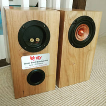 Inner Soul v2 Monitor Speakers