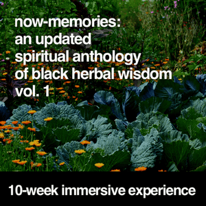 Now Memories: An Updated Spiritual Anthology of Black Herbal Wisdom (Vol.1)