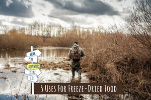 5 Uses For Freeze-Dried Food