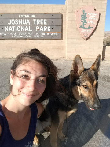 joshua tree roadtrip road trip dog dehydrated food