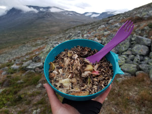 freeze-dried food for backcountry adventures