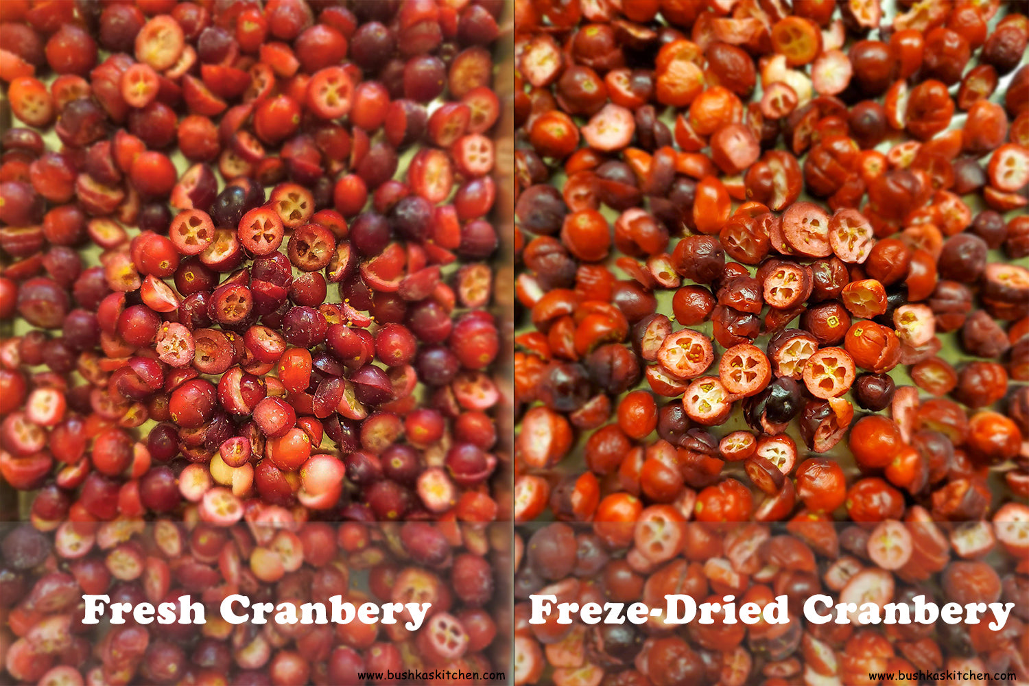freeze dried cranberries vs fresh cranberries