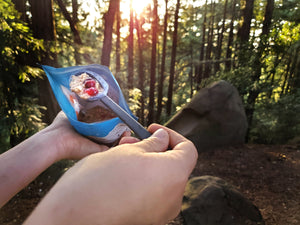 healthy freeze dried dessert for day hikes