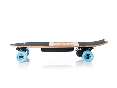 electric longboard battery