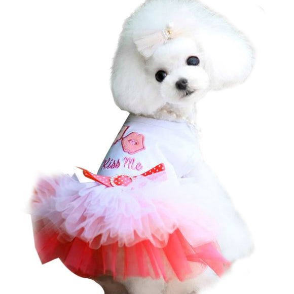 dog clothes for small dogs dress spring summer Puppy Small Dog Lace Princess for chihuahua dog mascotas roupa pet cachorro