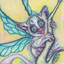 Bush Baby Fairy Luster Print - The Butterfrog