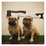 French Bulldog Halloween Costumes! Best Picks Ever!