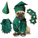 French Bulldog Costumes To Embellish The Christmas Time