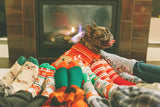 Top 5 Ideas To Spend Christmas With Your French Bulldog