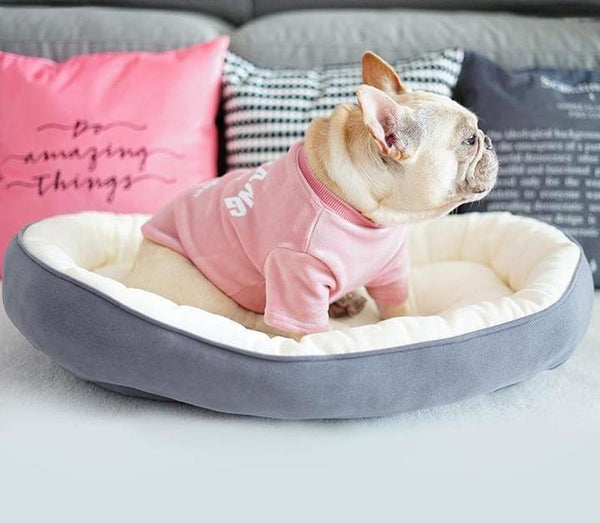 frenchie bed-standard