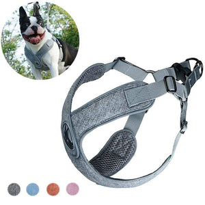 Frenchie World Shop Breathable French Bulldog Harness