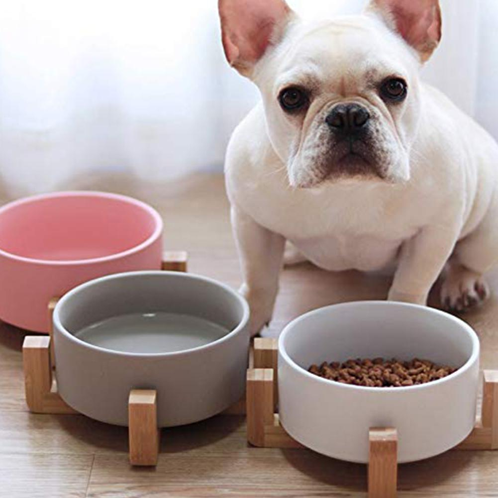 Frenchie World Shop Ceramic Feeding Bowl With Wooden Stand