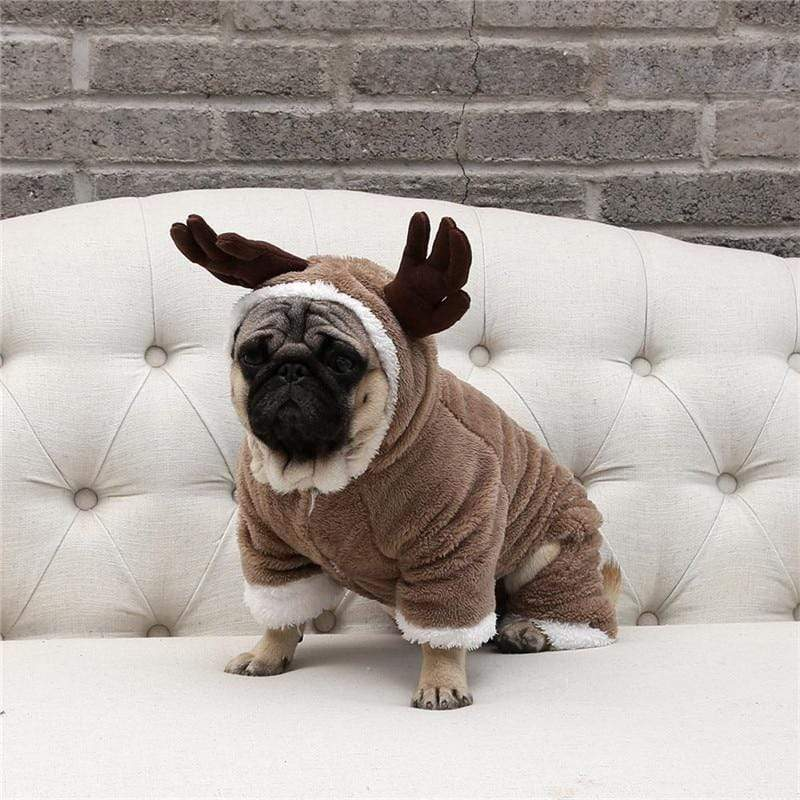 Frenchie World Shop Christmas Dog Costume