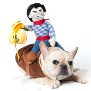 Frenchie World Shop Blue / S Cowboy Dog Costume