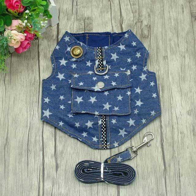 Frenchie World Shop Star / L Denim Dog Harness and Leash