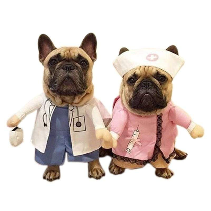 Frenchie World Shop Doctor And Nurse Halloween Dog Costume